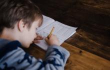 Qual a Idade Mínima para o ingresso no ensino fundamental?